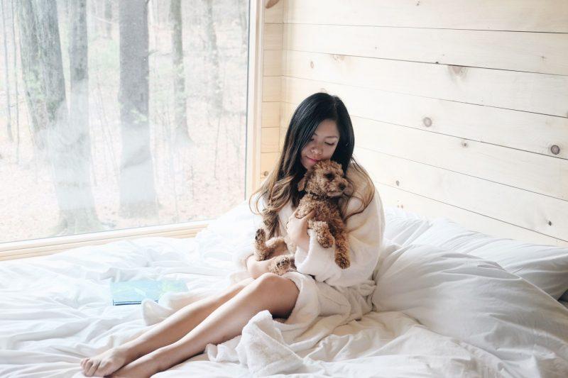 del-rossa-blogger-dog-getaway