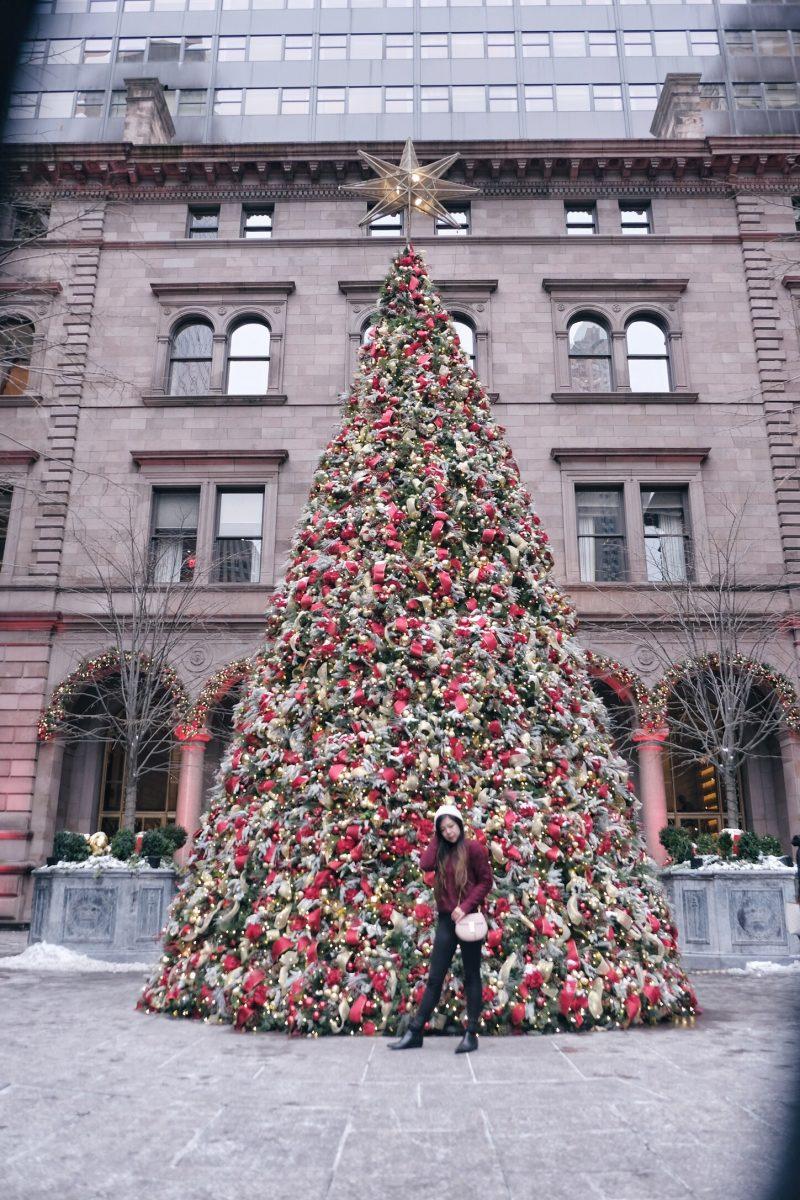 lotte palace tree